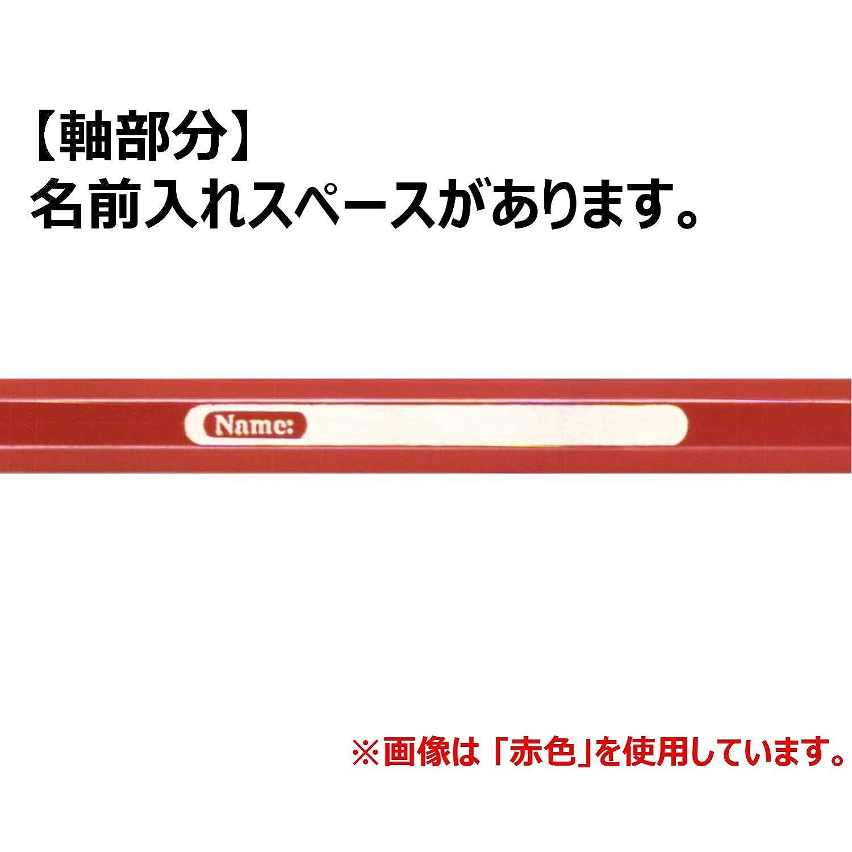 japan import 24 color set TFC-WCP//24C Shachihata Faber-Castell watercolor pencils
