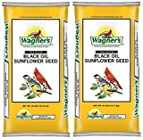Wagners Black Oil Sunflower Seed arFrIZ, (2 x 40-Pound Bag)