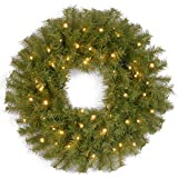 National Tree 24 Inch Norwood Fir Wreath with 50 Battery Operated Dual LED Lights (NF-304D-24WB-1)