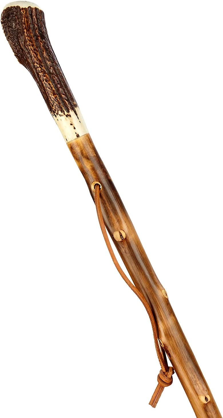 Stock-Fachmann B/âton de randonn/ée flamm/é avec corne et dragonne en bois v/éritable ch/êne