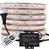 XUNATA 164ft LED RGB Rope Strip Light, AC 110V 3000 Units SMD 5050 LEDs Remote Control Multi-Color Changing Waterproof Flexible Strip Lights for Indoor Outdoor Christmas Decoration