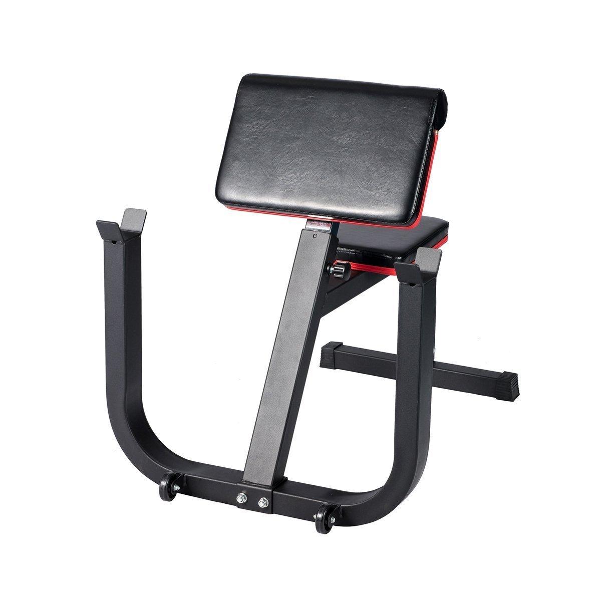 エンジョイ説教者カールベンチアーム練習強度電源重量トレーニングベンチ   B0777KR8XT