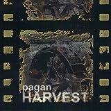 Pagan Harvest