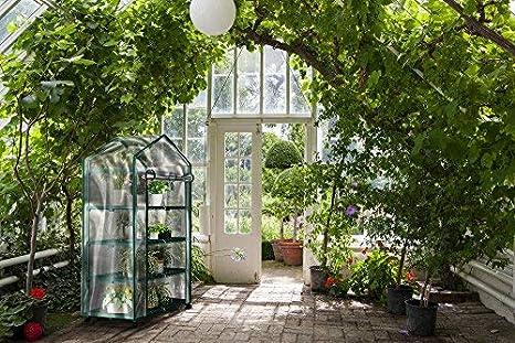 Invernadero Planta de ruedas con cubierta transparente - 4 niveles de stands- interior al aire libre portátil Kit de solución para Home - hierbas y flores ...