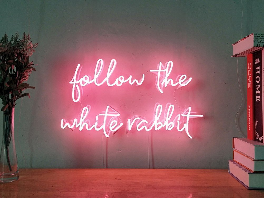 Follow The White Rabbit Real Glass Neon Sign For Bedroom Garage Bar Man Cave Room Home Decor Handmade Artwork Visual Art Dimmable Wall Lighting Includes Dimmer