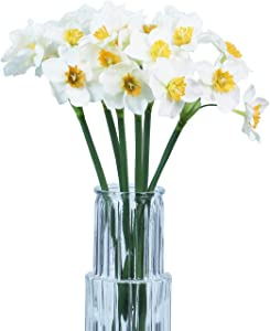 Tinsow Artificial Daffodil Flowers 15.8 Inches Narcissus Spring Flower Fake Silk Flower Arrangement for Home Wedding Decor (White, 6)