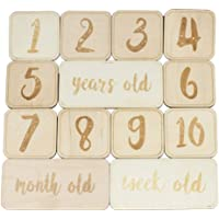 TOYANDONA 13pcs Baby Monthly Photo Cards Square Set Wooden Engraved Discs for Newborn Milestone Photography Props Shower Registry