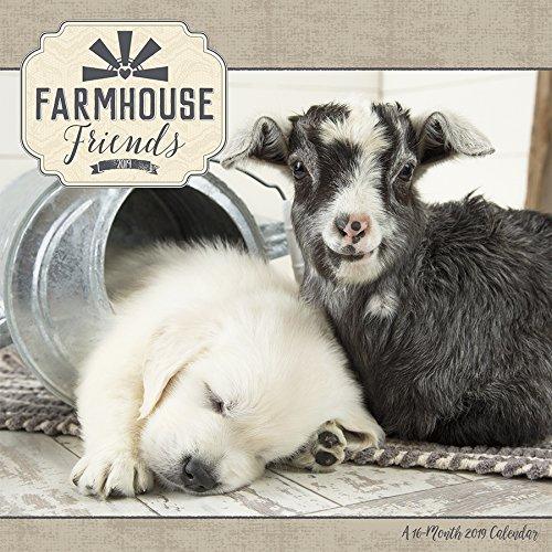 2019 Farmhouse Friends Wall Calendar (Friends Calendar)