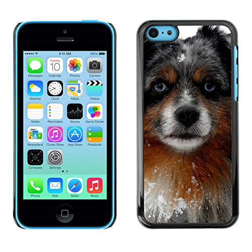 Premio Sottile Slim Cassa Custodia Case Cover Shell // F00009873 chien // Apple iPhone 5C