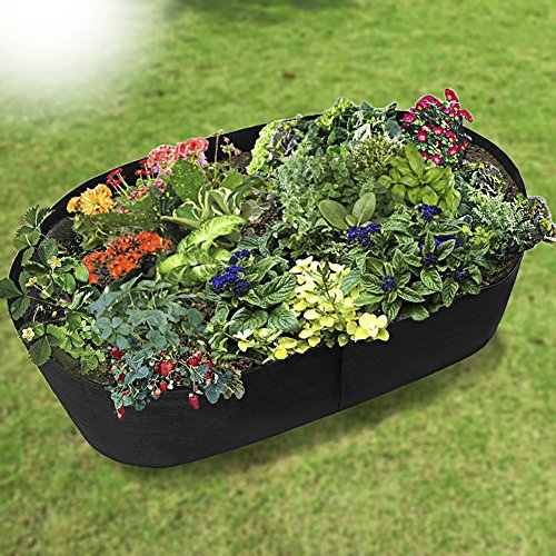 (Xnferty Fabric Raised Garden Bed, 4x2 Feet Rectangle Breathable Planting Container Grow Bag Planter Pot for Plants, Flowers, Vegetables (Black))