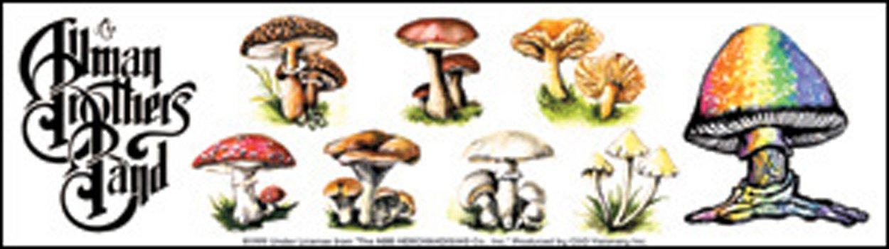 S-0612 Licenses Products Allman Mushrooms Sticker C/&D Visionary Inc