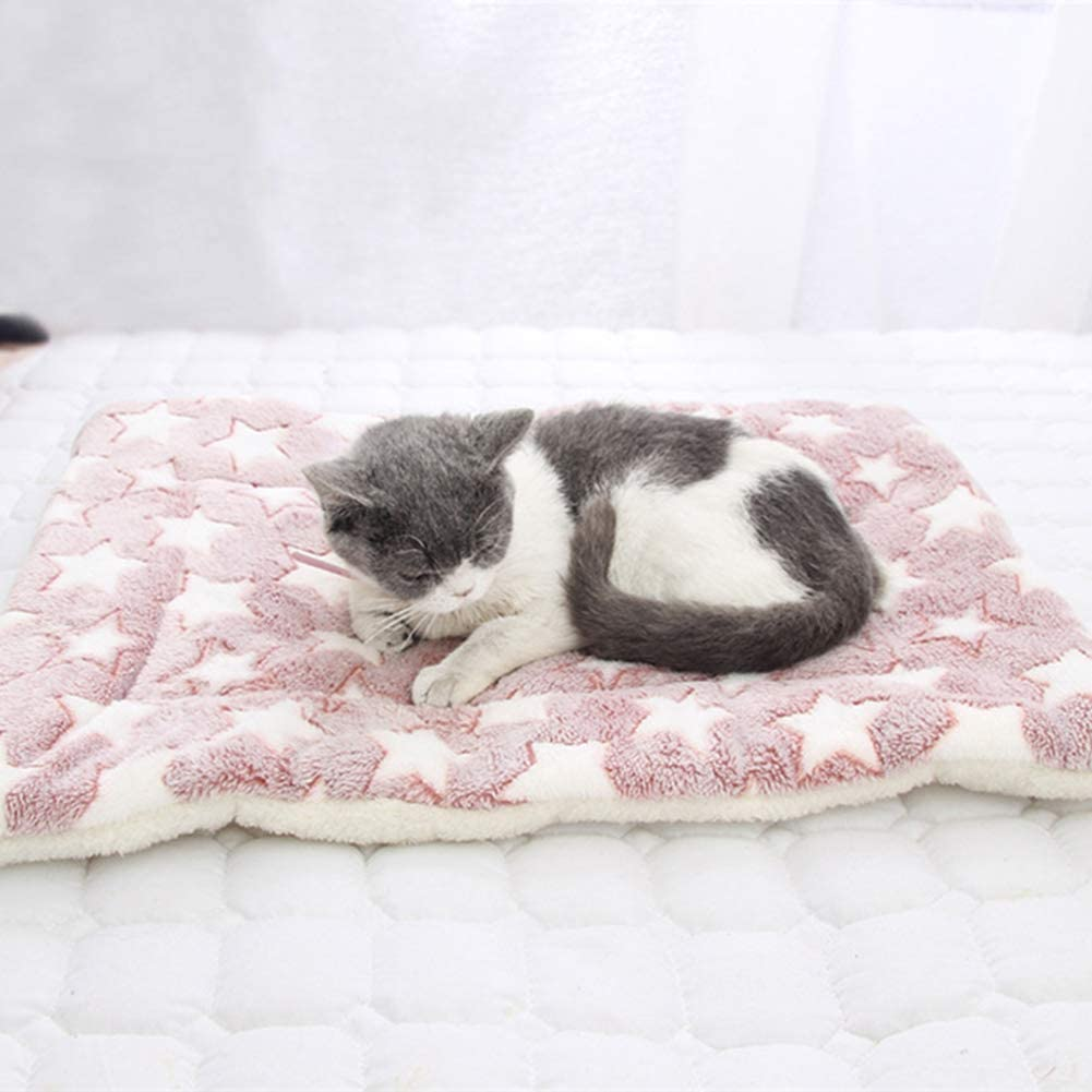 LPxdywlk Mascota Gatos para Perros Patas De Estrella Alfombrilla ...