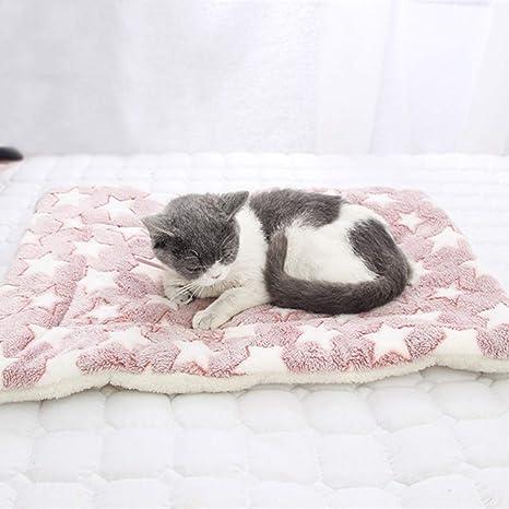 LPxdywlk Mascota Gatos para Perros Patas De Estrella ...