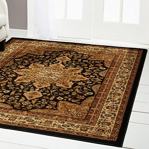 Traditional Entryway (Home Dynamix Royalty Ursa Area Rug | Traditional Living Room Rug | Classic Boarders and Medallion Center | Persian-Inspired Pattern | Black, Beige 43