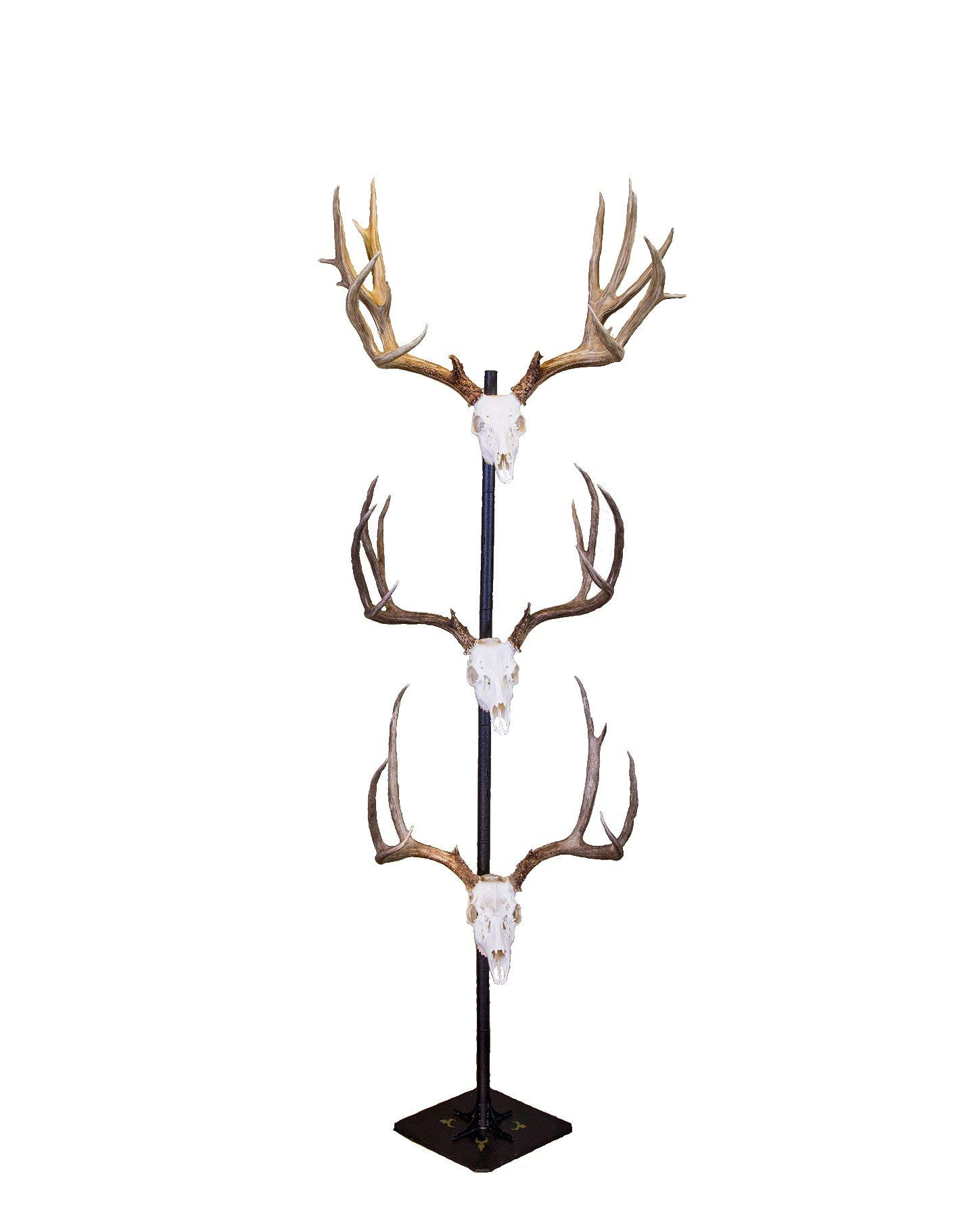 Skull Hooker Trophy Tree European Trophy Mount - Hang up to 5 Taxidermy Deer Antlers and other Skulls for Display - Graphite Black by Skull Hooker (Image #1)