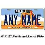 Amazon.com: TEAMLOGO - Placa de licencia personalizada de ...
