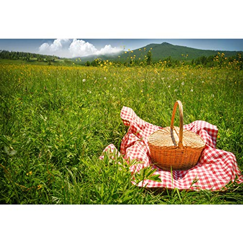 CSFOTO 10x6.5ft Spring Scenery Backdrop Outdoor Picnic