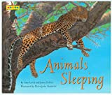 img - for Animals Sleeping book / textbook / text book
