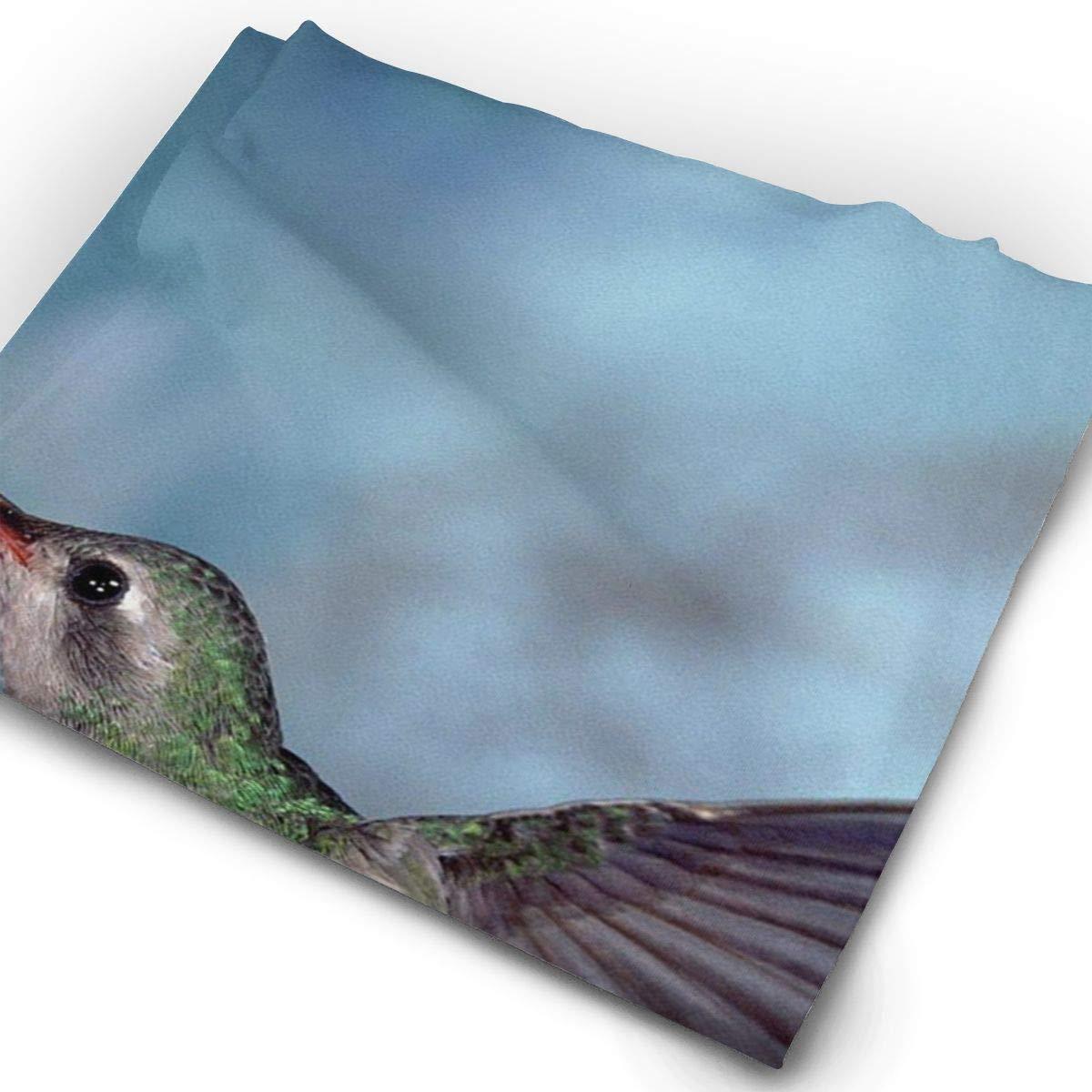 Headbands Hummingbird Headwear Bandana Sweatband Gaiter Head Wrap Mask Neck Outdoor Scarf