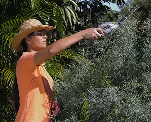 Buy small cordless hedge trimmer