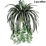 2 Pcs- Artificial Silk Orchid Bracketplant Spider Plant Fake Hanging Grass