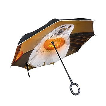 ALAZA Happy Halloween Horror perro fantasma calabaza farol auxiliar paraguas paraguas plegable de doble capa resistente