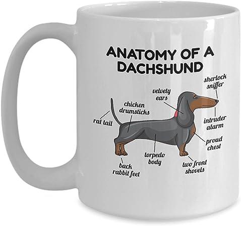 Dachshund Anatomy Mug Doxie Wiener Dog Great Funny Gift For Daschund Owner Mug 15 Oz Maposseddyddie