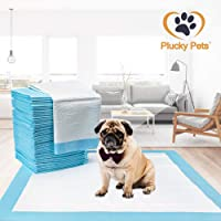 Plucky Pets - 50/100/200/400 Training and Puppy Pads Pee Pads for Dogs 60x60cm - Super Absorbent & Leak-Free (50 Pads, Blue)