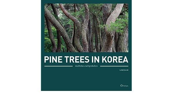 Amazon Pine Trees In Korea Aesthetics And Symbolism Hollym
