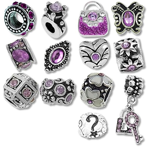 - Timeline Treasures European Charm Bracelet Charms and Beads For Women, DIY Jewelry, Purple Birthstone February June