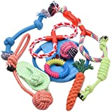 PetInn Puppy Teething Toys Set - 10 Pack Dog Chew Rope Toys, Durable for Aggressive Chewers Outdoors and Indoors(Training, Playing, Tugging, Chewing and Shaking)