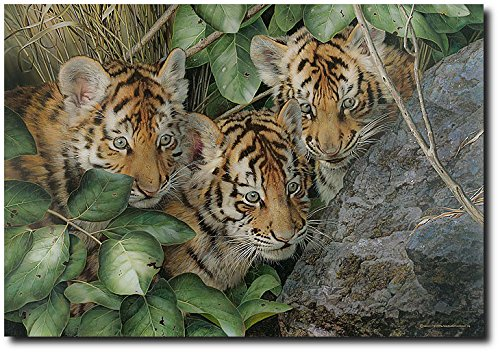 hide-and-seek-by-carl-brenders-limited-ed-print-tiger-cubs-l-e-of-150-wildlife-art-prints