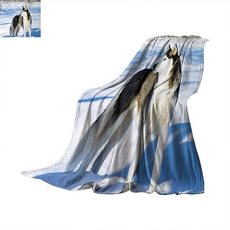 Outstanding Amazon Com Alaskan Malamute Throw Blanket Chukchi Husky Cjindustries Chair Design For Home Cjindustriesco