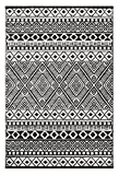 Green Decore Lightweight Outdoor Reversible Plastic Relic Rug (4 x 6, Black/White)