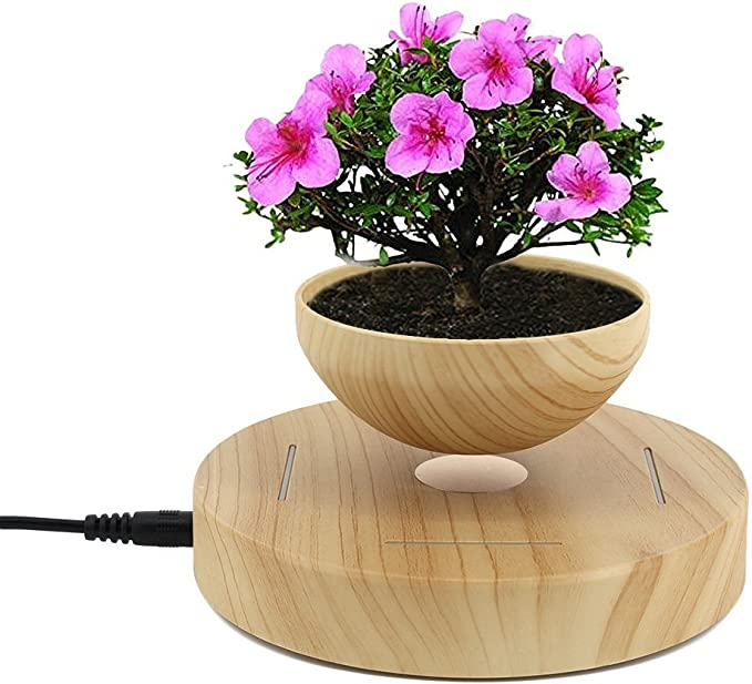 Amazon Com Levitating Air Bonsai Pot Magnetic Levitation Suspension Flower And Air Bonsai Pot Garden Outdoor