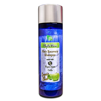 PhytoWorx Organic Hair Loss Shampoo | With Plant Stem Cells ...