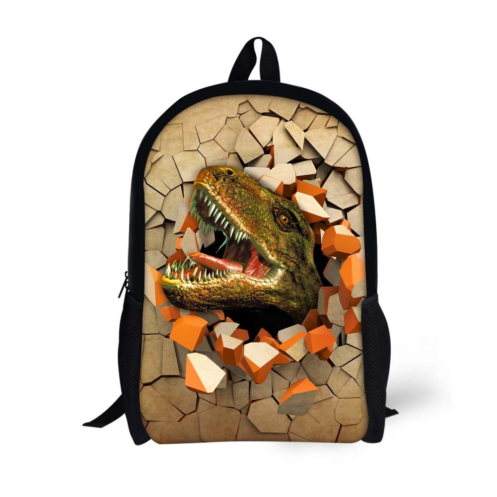 Amazon.com | Dinosaur Backpack for Boys School