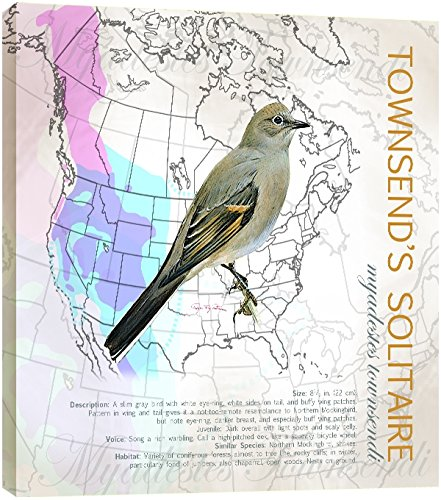 Tree-Free Greetings EcoArt Wall Plaque 11.25 x 11.25 Inches Townsends Solitaire by Roger Peterson 85380