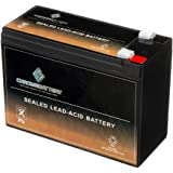 SLA Replacement Battery 12V 10AH AGM Battery- Sealed Lead Acid- Rechargeable & Maintenance Free- Chrome Battery