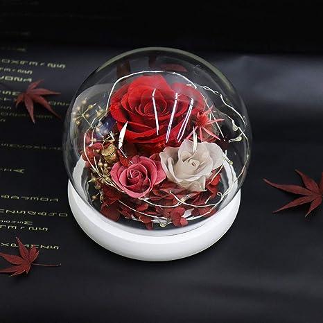 SBRTL Rosas Eternas San Valentín Maestro Regalos Navidad ...