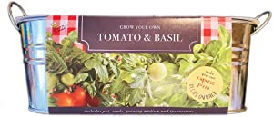 Buzzy Tomato & Basil Grow Kit! Includes Pots, Seeds, Growing Medium and Instruction! Easy Complete Vegetable Garden Kit! Grow Your Own Pizza at Home!