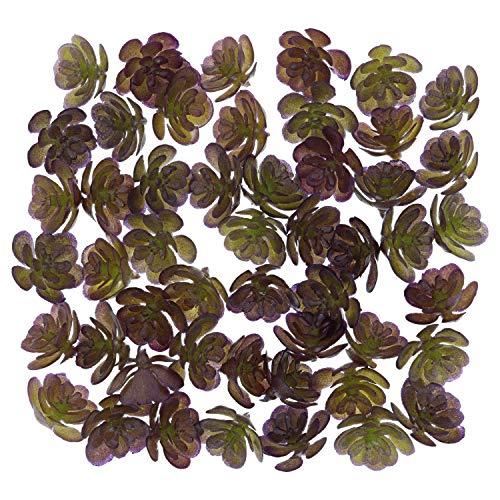 Tiny Purple Flowers - Faux Floret 50 pcs Mini Artificial Succulents Small Fake Succulent Plant Unpotted for Fairy Garden, Terrarium Decorations, Wreathe, Bouquet, and Floral Arrangement (Dark Purple)