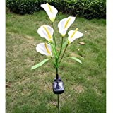 Elstey Calla Lily Flower Solar Power Lights Outdoor Waterproof LED Lamps Garden Yard Lawn Path Landscape Decoration Illumination (5 LED)