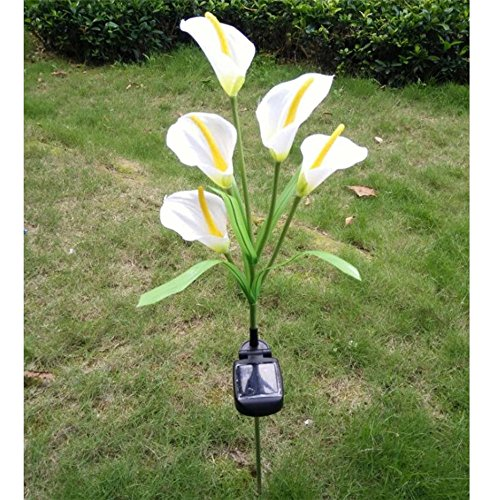 Lily Lamp Light - Elstey Calla Lily Flower Solar Power Lights Outdoor Waterproof LED Lamps Garden Yard Lawn Path Landscape Decoration Illumination (5 LED)