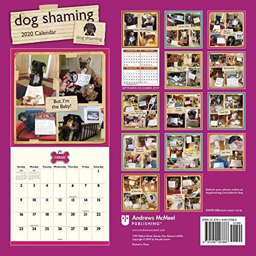 Dog Shaming 2020 Wall Calendar
