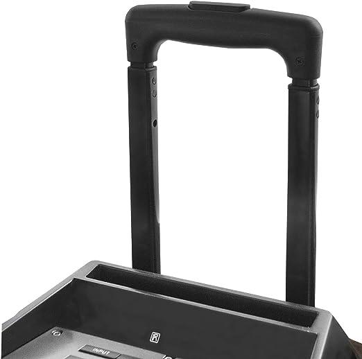 Woxter RocknRoller XL - Altavoz trolley con función karaoke, 100W, Display, BLUETOOTH, Lector SD/USB, AUX, Prioridad Mic, Mando a Distancia, Batería de alta capacidad, X2 micrófonos inalámbricos: Woxter: Amazon.es: Electrónica