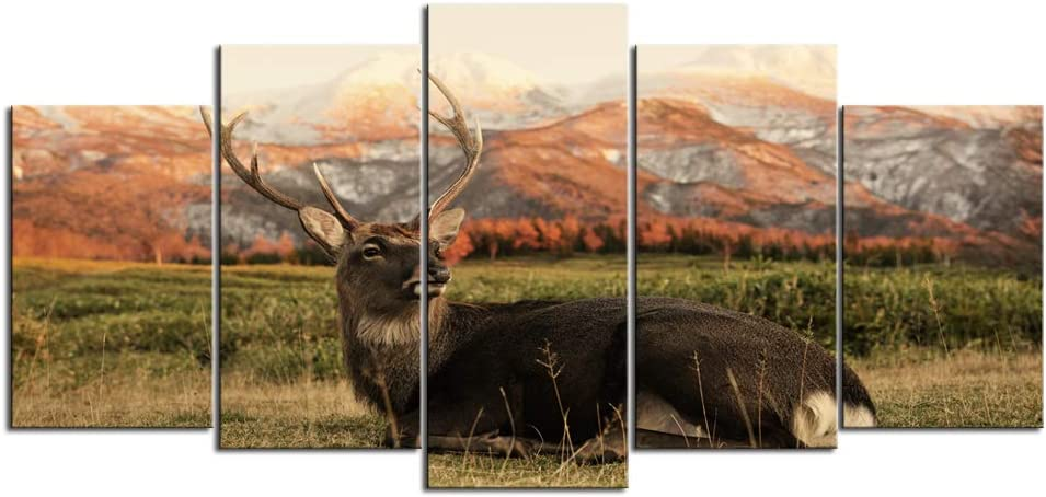 Nachic Wall 5 Piece Wall Art Deer Elk Pictures Canvas Print Wildlife Poster Animal Painting Artwork for Vintage Farmhouse Living Room Bedroom Decoration Framed Ready to Hang