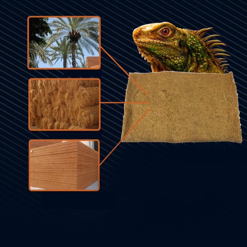 Iguanas Anoles Tappetino in Fibra di Cocco Naturale per lucertole per terrario POPETPOP