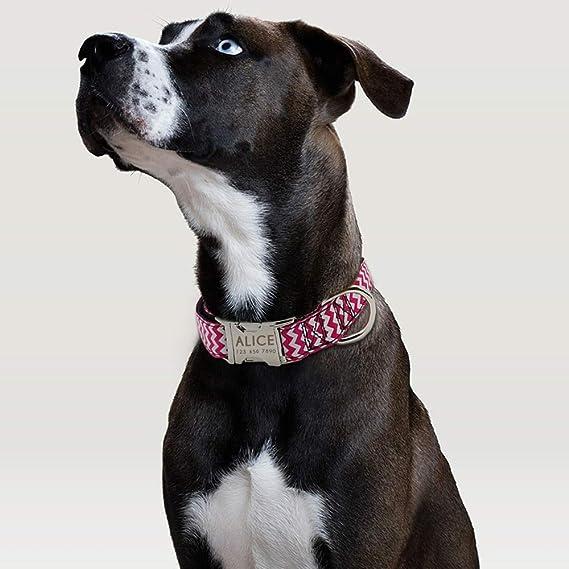 MAOBANG Collar Collar para Perros de Color Rosa Nylon Collares ...