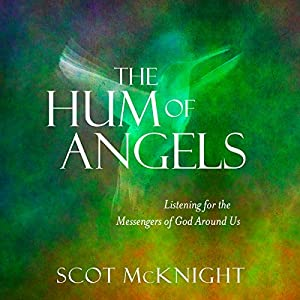 The Hum of Angels Audiobook